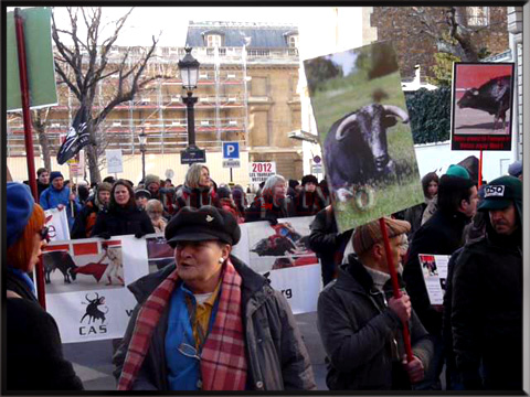 Manifestation anti-corrida à Paris