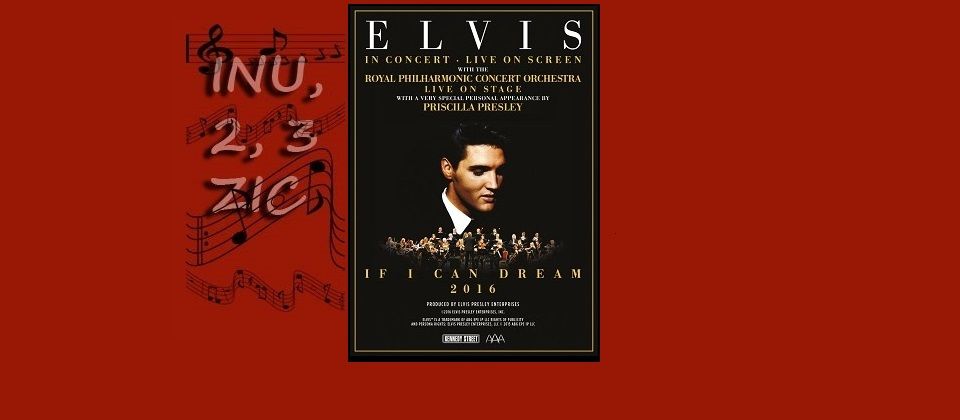 The King Elvis Presley - info reportages magazine inumaginfo.com